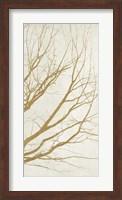 Golden Tree III Fine Art Print