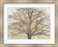 Sacred Oak Fine Art Print