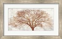 Tree of Bronze Fine Art Print