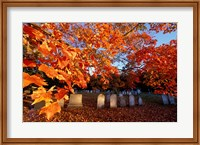 Fall Morning in a Portsmouth Cemetary, New Hampshire Fine Art Print