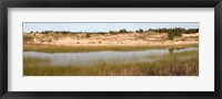 Sand Dunes and Marsh, Michigan Fine Art Print