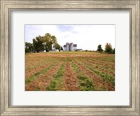 Barn and Silo, Colts Neck Township, New Jersey Fine Art Print