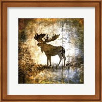 High Country Moose Fine Art Print