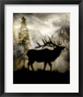 Mystic Elk Fine Art Print