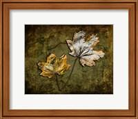 Metallic Leaf 2 Fine Art Print