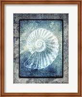 Hello Beach Shell I Fine Art Print