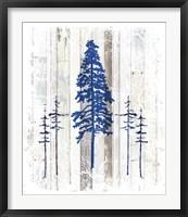 The Blue Moose - Lodge Pole Pine Fine Art Print