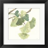Gingko Leaves I Light Fine Art Print