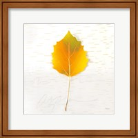 Autumn Colors III Fine Art Print