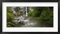 Forest Waterfall, Patagonia, Argentina Fine Art Print