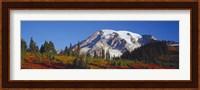 Mt. Rainier and Fall Color, WA Fine Art Print