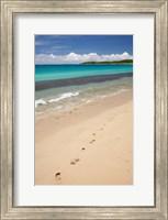 Footprints in sand on Natadola Beach, Coral Coast, Viti Levu, Fiji Fine Art Print