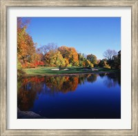 Trees in a golf course, Patterson Club, Fairfield, Connecticut Fine Art Print