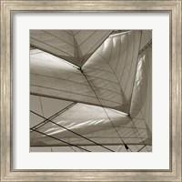 Sails 1 Fine Art Print