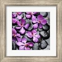 Zen Pebbles 5 Fine Art Print