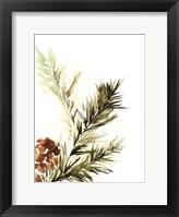 Pine Leaves Fine Art Print