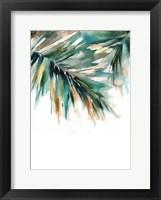 Evergreen II Fine Art Print