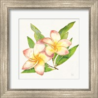 Tropical Fun Flowers I with Gold Fine Art Print