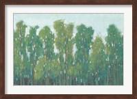 Forest Green II Fine Art Print