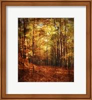 Autumn's Enchanted Forest Fine Art Print