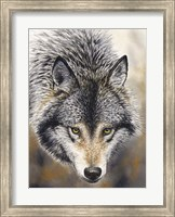 Nature's Beauty Fine Art Print