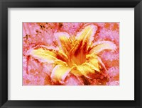 Flower XII Fine Art Print