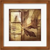 Autumn I Fine Art Print