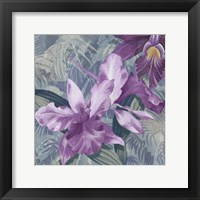 Windsong Orchid Blooms Fine Art Print