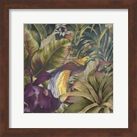 Golden Bird of Paradise Fine Art Print
