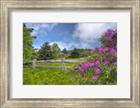 roan mountain Fine Art Print