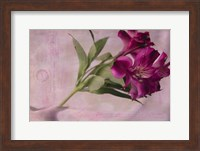 Forever Fuchsia Fine Art Print