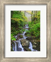 Small Waterfalls 2 Fine Art Print