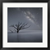 Milky Way In Botany Bay 1 Fine Art Print