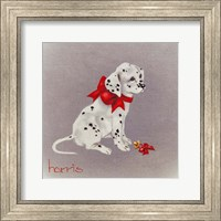 Dalmation Pup Fine Art Print