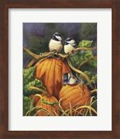Chickadees And Pumpkins Fine Art Print