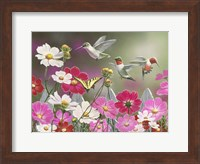 Cosmos and Hummingbirds Fine Art Print