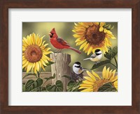Sunflowers and Songbirds Fine Art Print