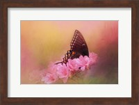 Napping In The Azaleas Fine Art Print