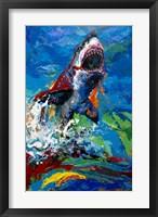 The Lawyer Breeching Great White Shark Fine Art Print