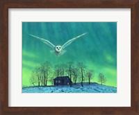 Cabin Comfort Fine Art Print