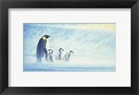 Arctic Home Fine Art Print
