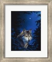 Blue Forest Fine Art Print