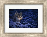 Deep Blue Fine Art Print