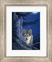 Moon Shine Fine Art Print