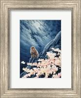 Spring - Cherry Blossoms Fine Art Print