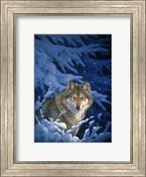 Winter - Snow Fine Art Print