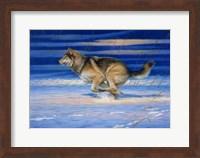 Snow Beat Fine Art Print
