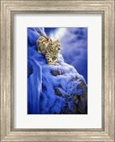 Snowy Cliff Fine Art Print