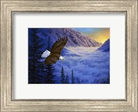 Soaring High Fine Art Print