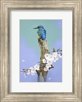 High Perch Fine Art Print